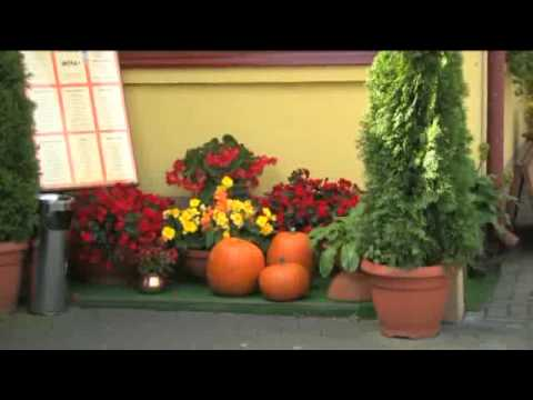 Willa i Restauracja Słoneczna w Okunince zaprasza