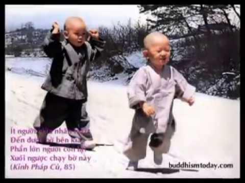 Chú Tiểu ngây thơ Thầy Thích Huệ Minh 01628175478