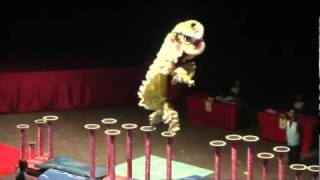 2012 World HK Dragon Dance & Lion Dance Championship