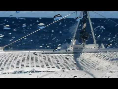 30 Knots On the Nose - FP Lavezzi 40 foot Catamaran