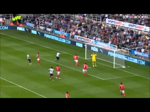 Shola Ameobi Goal vs Cardiff City - 030514