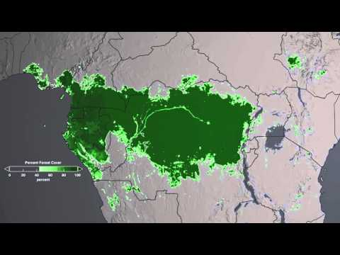Congo Forest Cover #EarthDay #GlobalSelfie #EarthRightNow