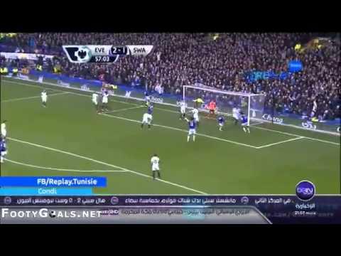 Everton 3-2 Swansea City-All Goals & Highlights 22/03/2014