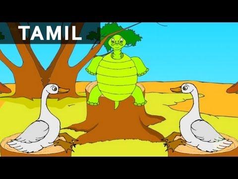 Foolish Tortoise  Animated Cartoon Story