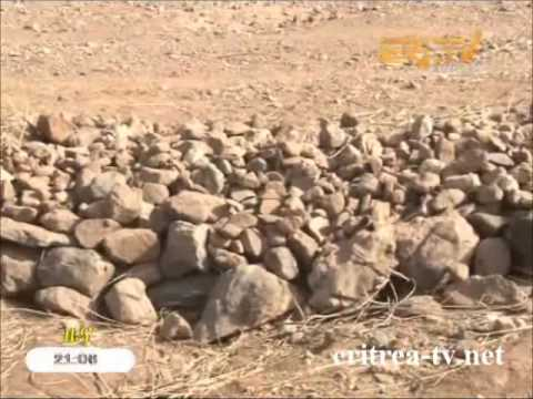 Eritrean News - Tigrinya - 23 April 2014 - Eri-TV