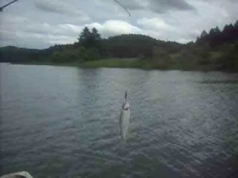 Henry hagg lake youtube for Henry hagg lake fishing