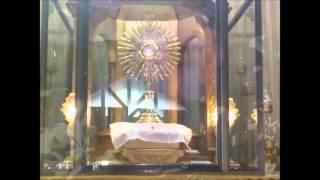 Adoration Prayer + 3 Mins Eucharistic Adoration