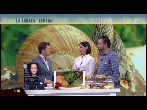 La lumaca 'romana': cibo e cosmesi