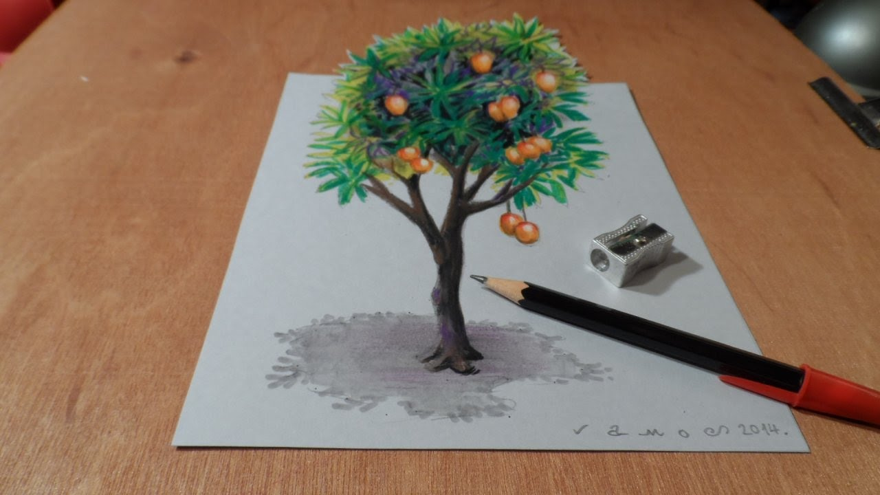 How I Draw A 3d Mango Tree Trick Art Time Lapse Youtube