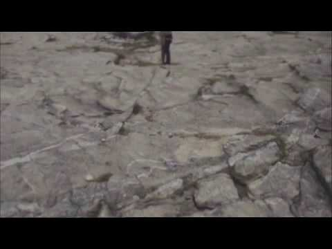 télécharger Calogero – La fin de la fin du monde