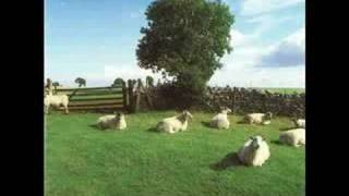 The KLF Wichita Lineman Was A Song I Once Heard