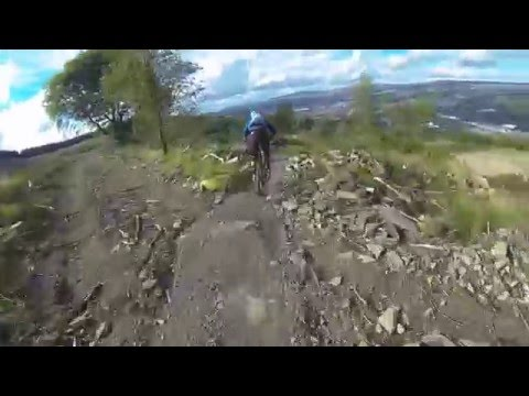 Bike Park Wales with Doddy and Fin
