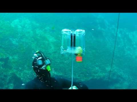 Suyun altında hacim basınç ilişkisi Boyle Yasası