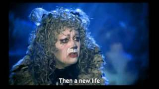Cats Memory With Eng Subtitle