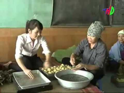 Bánh Gai Ninh Giang - Hải Dương