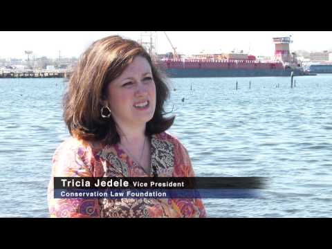 Tricia Jedele, Vice President, Conservation Law Foundation