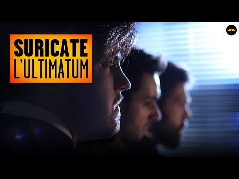 SURICATE - L'Ultimatum