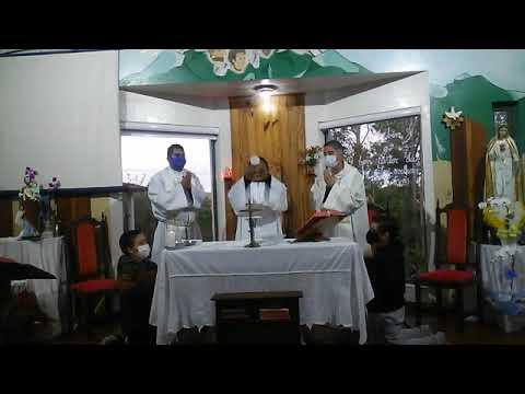 Santa Missa | 29.04.2021 | Quinta-feira | Padre Francisco de Assis | ANSPAZ