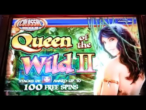queen of the wild slots