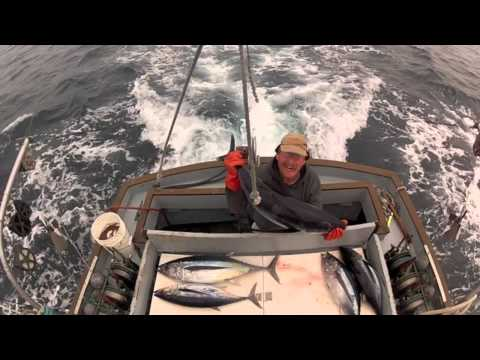 Albacore fishing with Jerry Foster