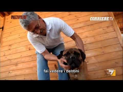 Duduismo Radiofonico #2 - Aiace e Dudù - Mix 24