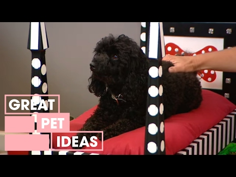 Decorating How To Make A Dog Bed Youtube