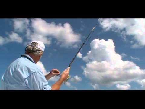 Thumbnail image for 'Gulf of Mexico Fishing for Redfish in Pasco County Florida'