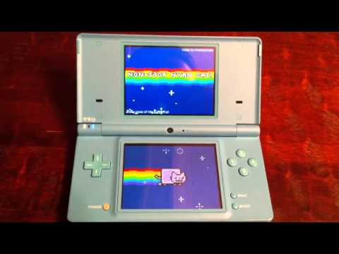 Nyan Cat for Nintendo DS!, http://nyancat.cat/ You can download the .nds file here: http://filetrip.net/f24842-nyan-for-nds-1-0.html Nyan Cat / Pop Tart Cat original GIF can be found h...