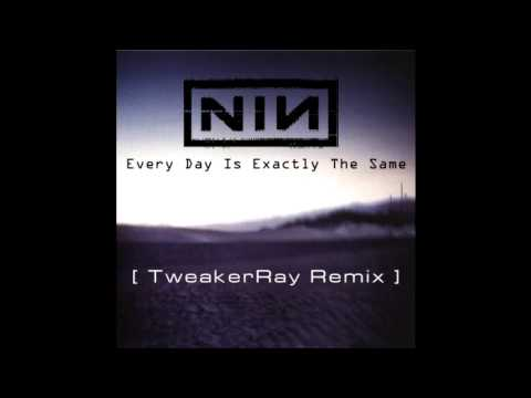 Nine Inch Nails - Every Day Is Exactly The Same (TweakerRay ReMix)