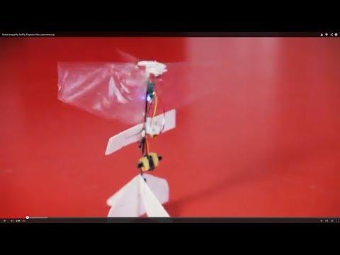 Robot dragonfly DelFly Explorer flies autonomously