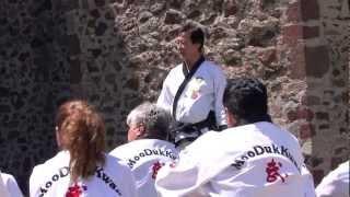 Grand Master Dai Won Moon