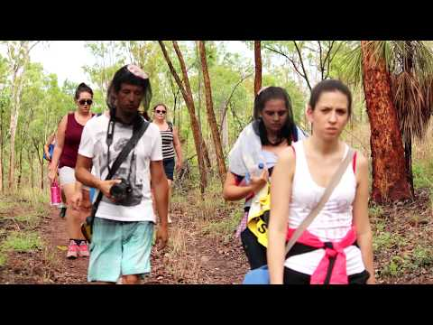 Kakadu film: crocodiles attack!