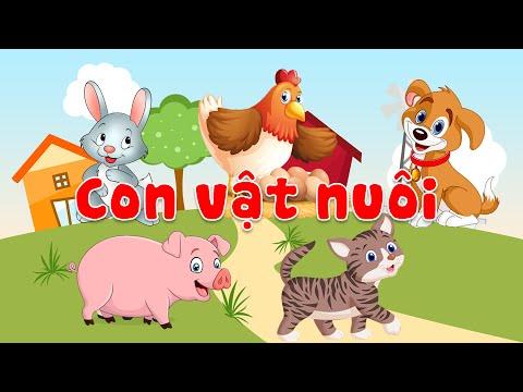 Dạy bé học các con vật nuôi trong nhà | tiếng kêu và hình ảnh động vật sống trong gia đình | ECE 3