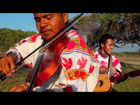 eL PAJONAL Huichol (cover) CARRILLOS MUSICAL