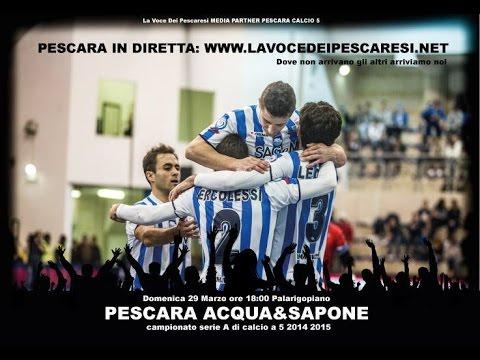 Pescara C5 vs Acqua&Sapone C5