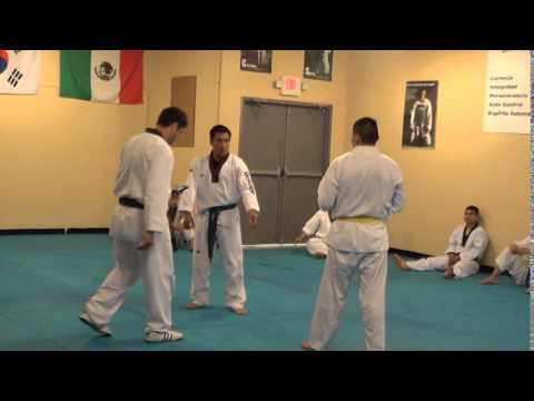 Hispanic Association of Taekwondo