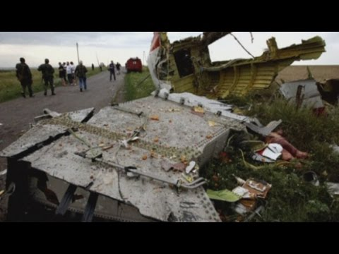 Malaysia Airline MH17: World leaders call for full investigation