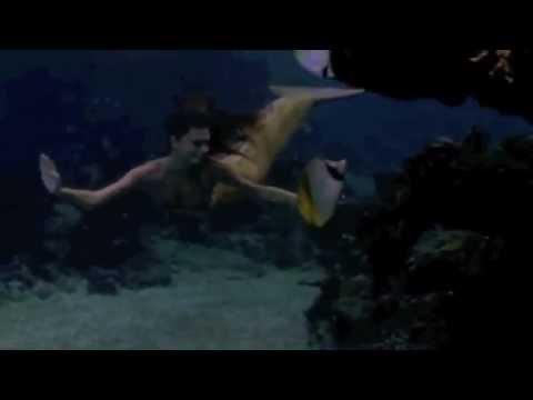 H2o mermaids swimming hqdefault