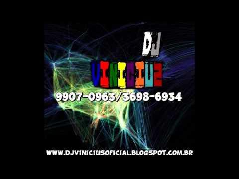 Mega Funk Ostentação 2014 Dj Vinicius