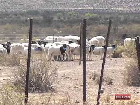 Eighty percent of SA land owned by private companies