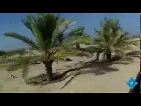 His Highness Sheikh Mohammed bin Rashid Al Maktoum touring Sir Bani Yas Island