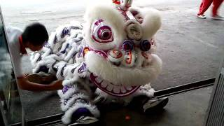 smk chung hua miri lion dance.3gp view on youtube.com tube online.