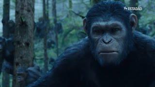 """Mais realista, novo """"Planeta dos Macacos"""" chega aos cinemas - Reprodução"""