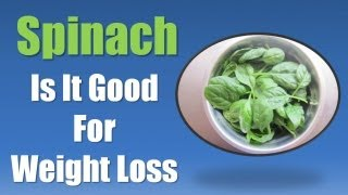 Spinach Weight Loss Best Foods For Weight Loss Spinach