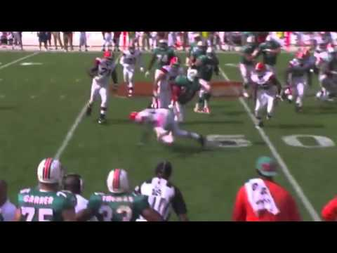 Reggie Bush Miami Dolphin Highlights