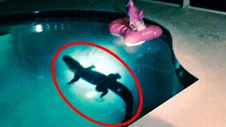 Top 15 Mysterious Things Found in People's Backyards