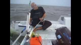 Janus Catamaran Sailing.avi
