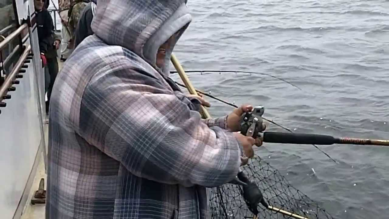 deep sea fishing monterey ca on randy 39 s whale watching