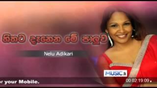 Nelu Adhikari - Hithata Denena Me Paluwa