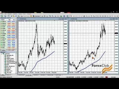 Советник forex gold trader